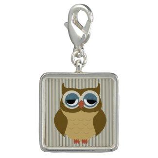 Cute Sleepy Owl in Earth Tones Charm