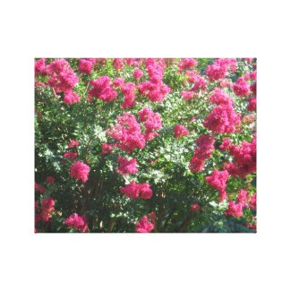 Red Flowers in the Park Canvas Print