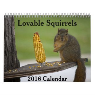 Lovable Squirrels 2016 Calendar