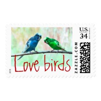 Love birds elegant wedding engagement colorful stamp