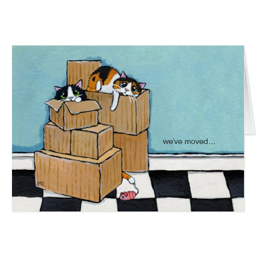 3 cats boxes we 39 ve moved note card zazzle. Black Bedroom Furniture Sets. Home Design Ideas