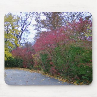 A Walk On A Beautiful Autumn Day mousepad