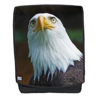 Eaglebucks.Com