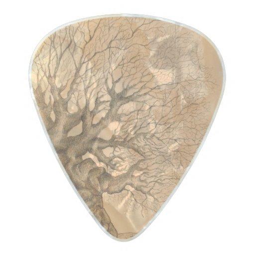 ancient tree unusual guitar pick pearl celluloid guitar pick zazzle. Black Bedroom Furniture Sets. Home Design Ideas