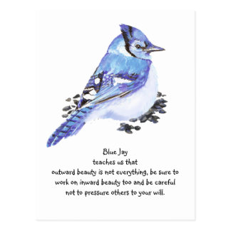 Blue jay animal totem symbolism & meanings | sunsigns. Org.