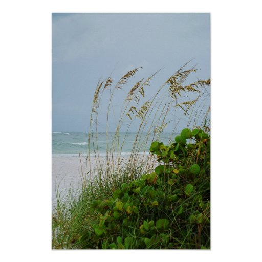 Island Beach Scenes: Anna Maria Island, Florida, Beach Scene Poster
