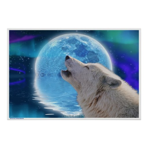Arctic Wolf Howling at Aurora & Moon Wildlife Art Poster ...