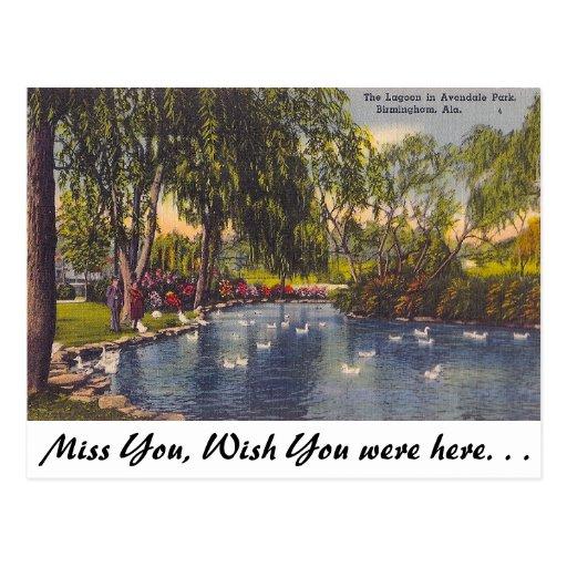 Avondale Birmingham Al: Avondale Park, Birmingham, AL Postcard