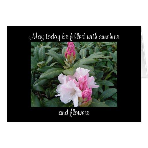 beautiful blooms encouragement flowers card  zazzle
