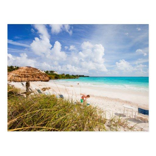 Caribbean Beach: Beautiful Caribbean Beach Postcard