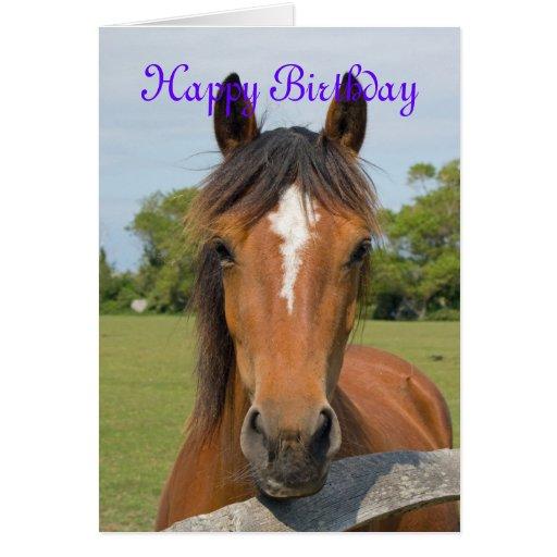 beautiful horse head happy birthday greetings card  zazzle