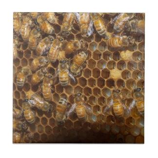 Beehive Ceramic Tiles Zazzle