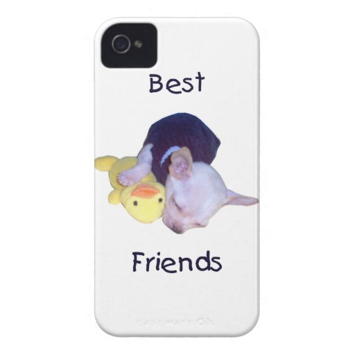 best friends (chihuahua) iPhone 4 cases