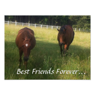 Best Friends Forever Posters   Zazzle