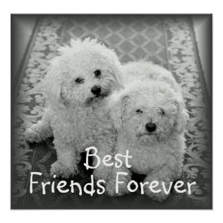 Forever Friends Posters | Zazzle