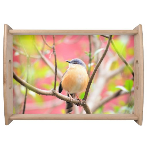 Bird Beautiful Colorful Nature Scenery Serving Tray