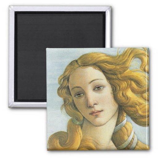 The Birth of Venus and the Renaissance Essay