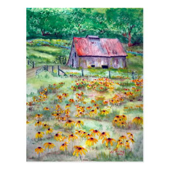 Black-Eyed Susans Wildflower Barn Watercolor Post Card