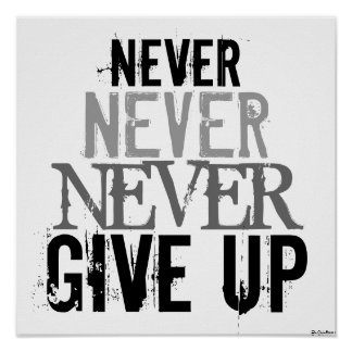 Cool Posters Black And White Black  amp White Never Give Up