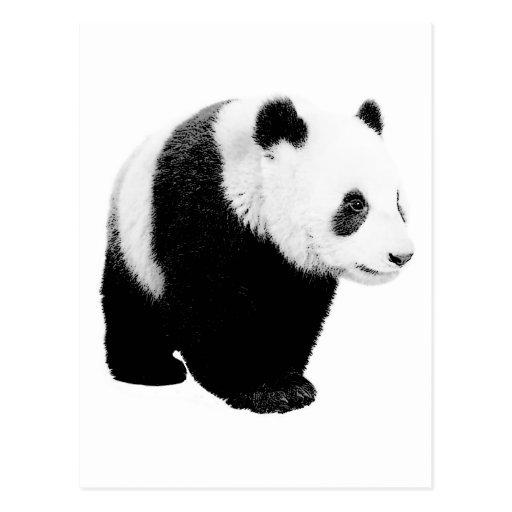 Posting panda