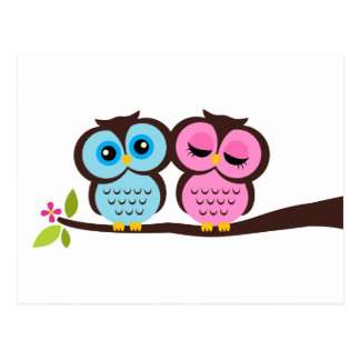 Pink And Blue Owl Photo 3