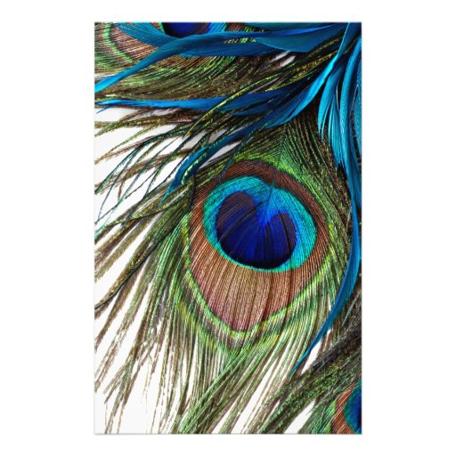 Blue Green Purple Exotic Peacock Feather Stationery | Zazzle