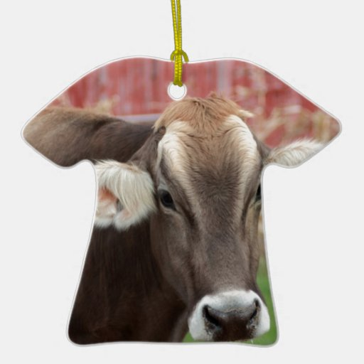 Brown Swiss Cow Christmas Ornament | Zazzle