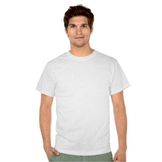 Bullying is not the answer t-shirt