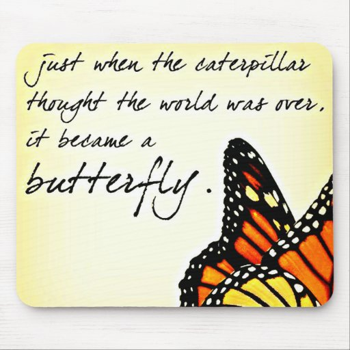 Inspirational Quotes About Life Struggles: Butterfly Life Struggle Inspirational Quotes Mouse Pad