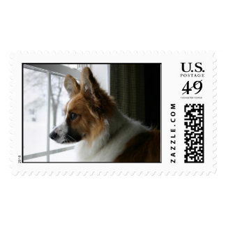Corgi Dogs Postage Stamps | Zazzle