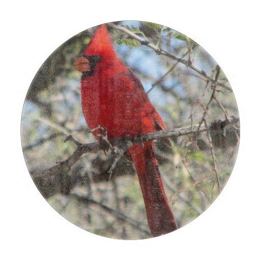 Kitchen Cardinal Decor Serving