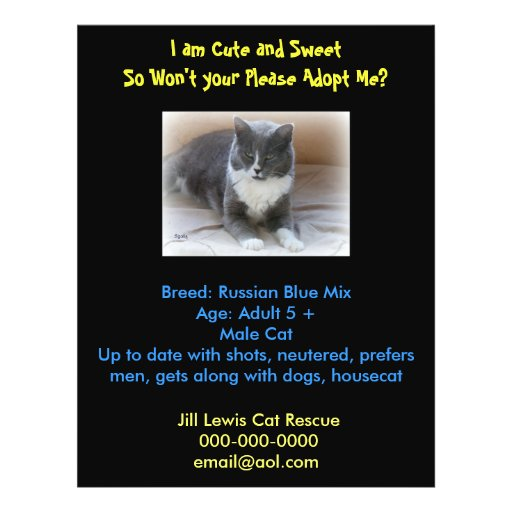 Cat adoption template flyer zazzle for Dog adoption flyer template