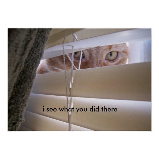 Cat in the Window - I See What You Did There Poster | Zazzle