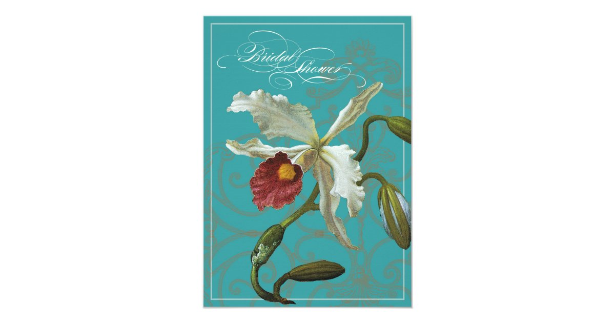 Blue Orchid Wedding Invitations: Cattleya Orchid Blue - Bridal Shower Invite