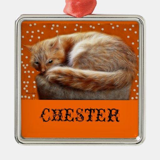 Chester The Cat Ornament | Zazzle