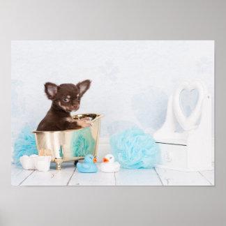 Dog Bath Art Amp Framed Artwork Zazzle