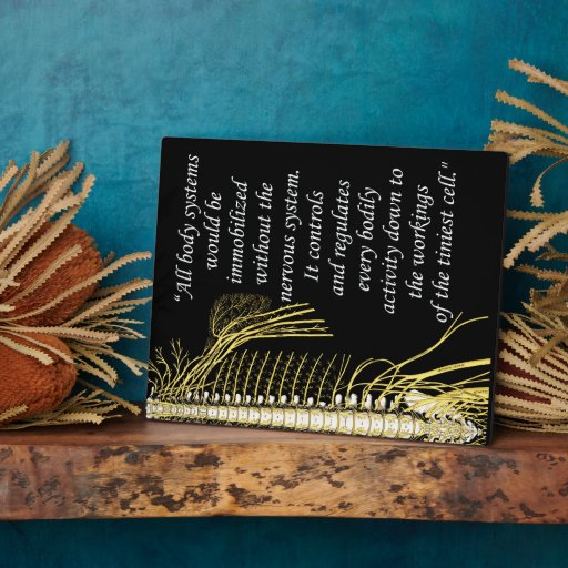 Quotes About People Who Notice: Chiropractic Nervous System Quote Easel Plaque
