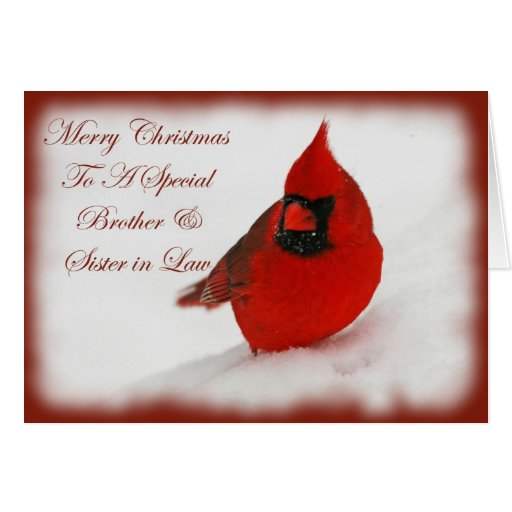 Christmas Wishes Cardinal Brother & Sister In Law Card ...