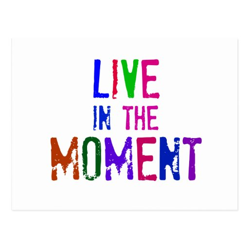 Good Quotes About Living In The Moment: Colorful Live In The Moment Quote Typography Postcard