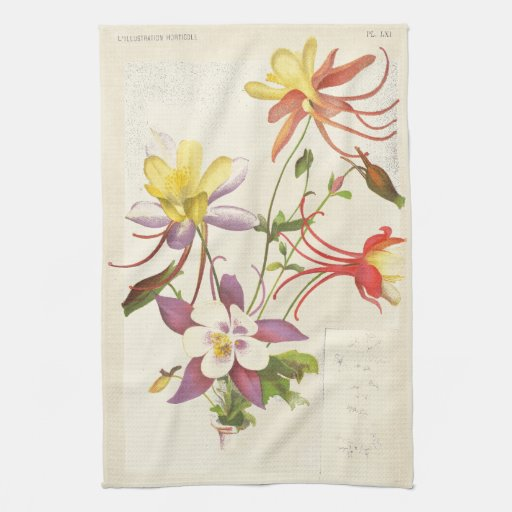 Columbine Floral And Gifts: Columbine Floral Botanical Flowers Kitchen Towels