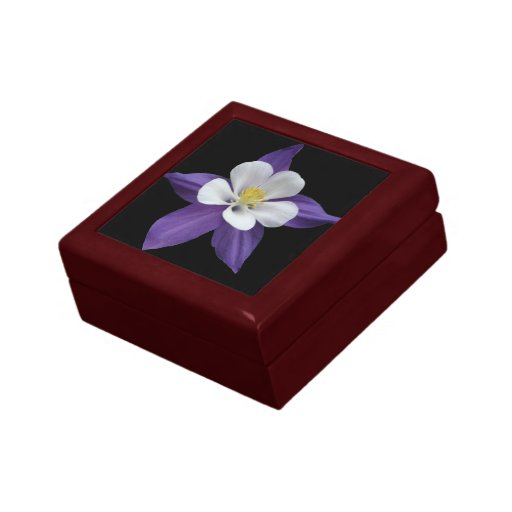 Columbine Floral And Gifts: Columbine Purple And White Flower Jewelry Gift Box