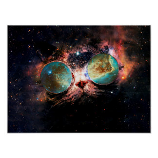 Cat In Space Posters   Zazzle