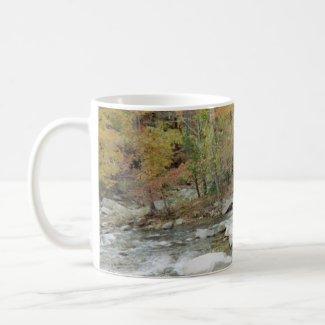 Creek At Chimney Rock, North Carolina mug