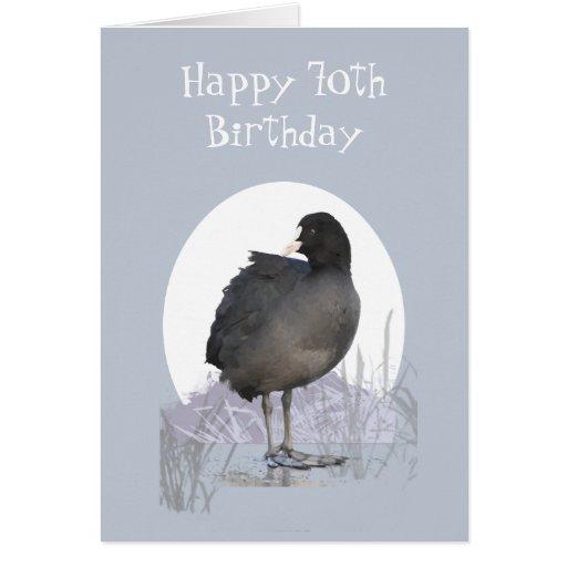 "Custom 70th Birthday ""Old Coot"" Funny Bird Humor Card"