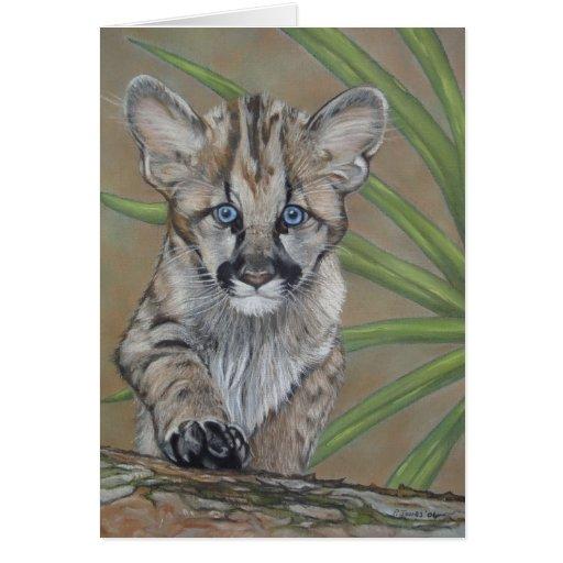 cute baby cougar kitten wildlife art card | Zazzle