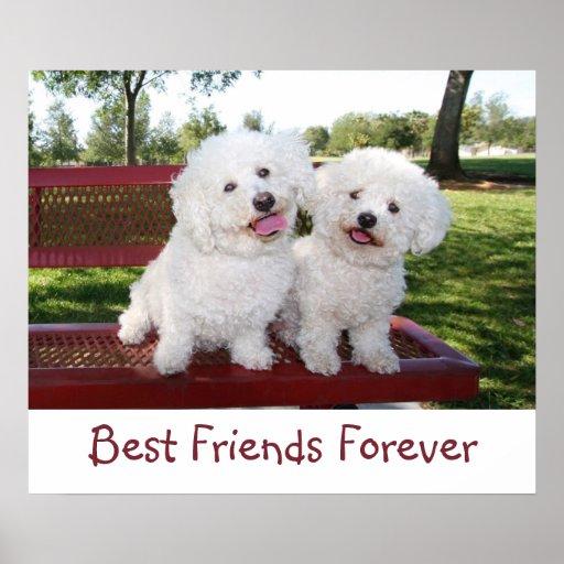 Cute Best Friends Forever Poster Print | Zazzle