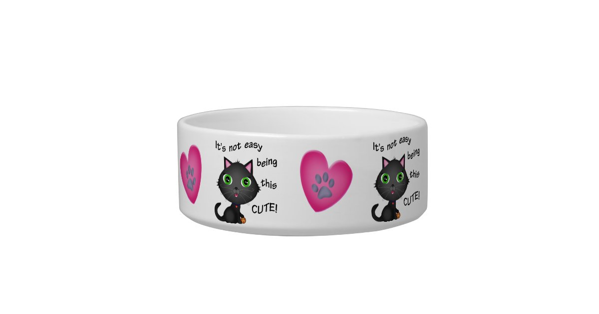 I And Love And You Cat Food Variety