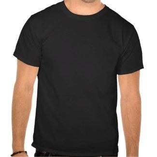 Cute Cartoon Happy Pinto Pony T-Shirt shirt