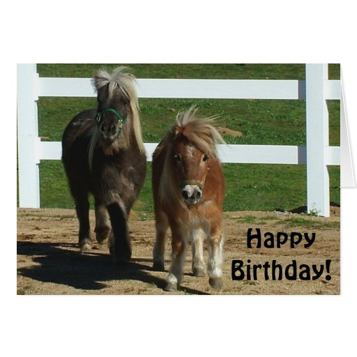 Horse Birthday Cards, Horse Birthday Card Templates