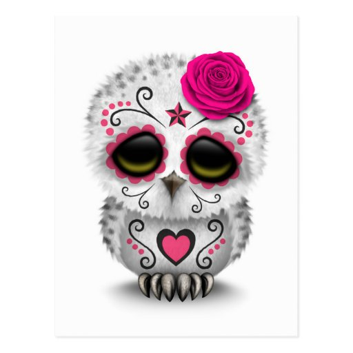 Cute Pink Day of the Dead Sugar Skull Owl White Postcard ...
